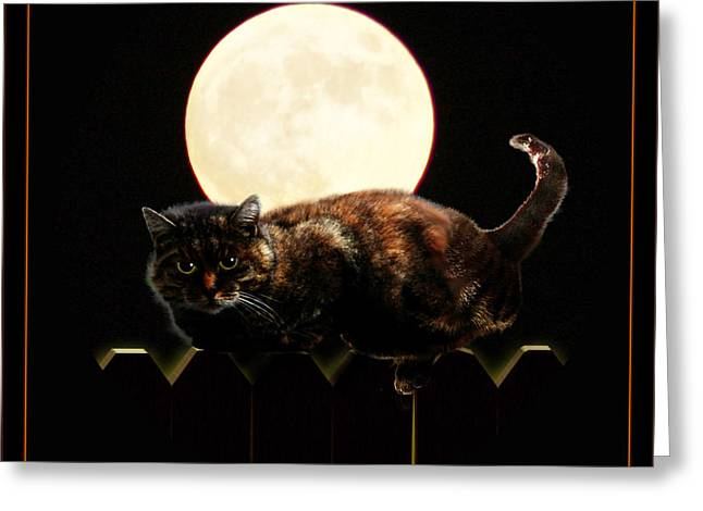 Tricks Mixed Media Greeting Cards - Full Moon Cat Greeting Card by Gravityx Designs