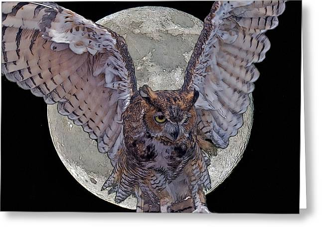 Wildlife Photos Greeting Cards - Full Moon Greeting Card by Larry Linton