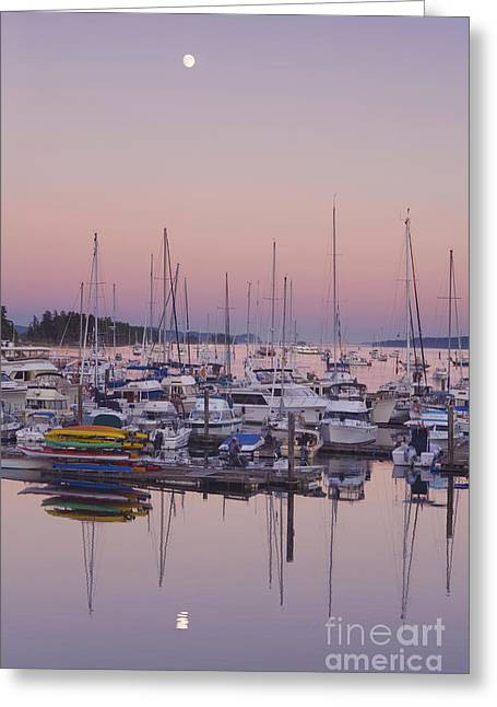 Sea Moon Full Moon Greeting Cards - Full Moon Over Ganges Harbor Greeting Card by Rob Tilley