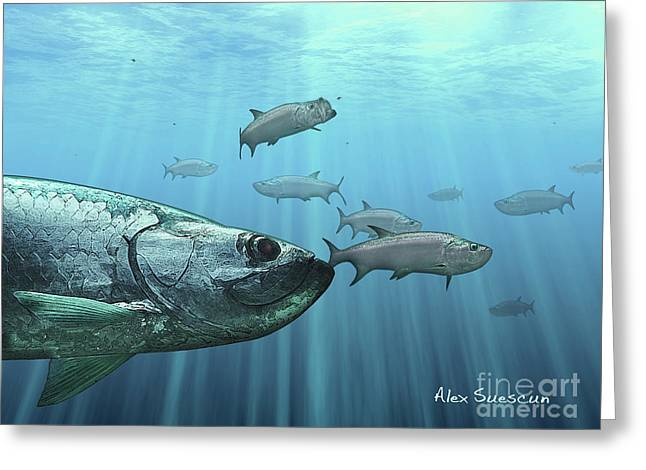 Tarpon Drawings Greeting Cards - Full Moon Platoon Greeting Card by Alex Suescun