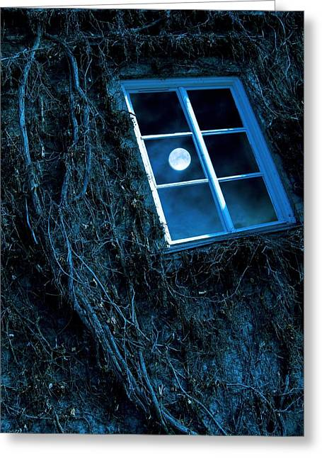 Moonlit Night Greeting Cards - Full Moon Reflected In A Window Greeting Card by Richard Kail