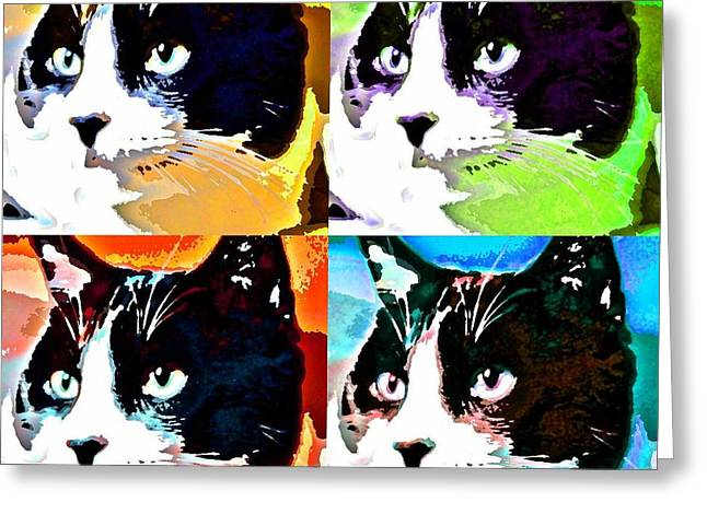 Tuxedo Greeting Cards - Funky Monty Greeting Card by Fraida Gutovich