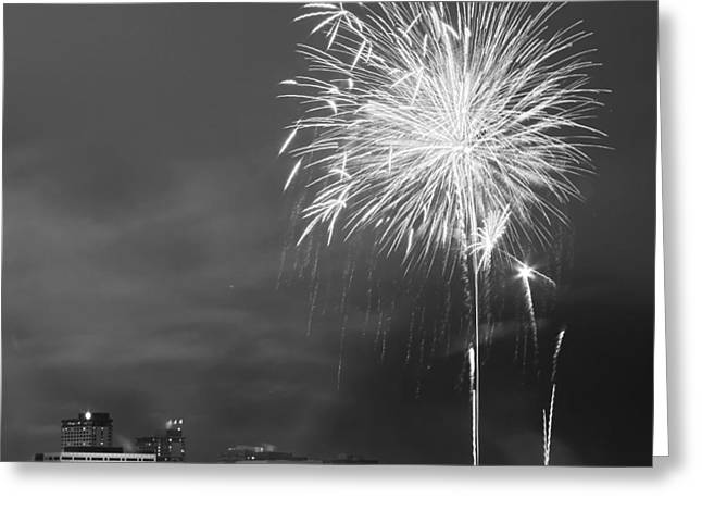 White Fur Greeting Cards - Fur Rondy Fireworks Greeting Card by Ed Boudreau