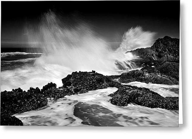 Ocean Spray Greeting Cards - Fury Greeting Card by Mike  Dawson