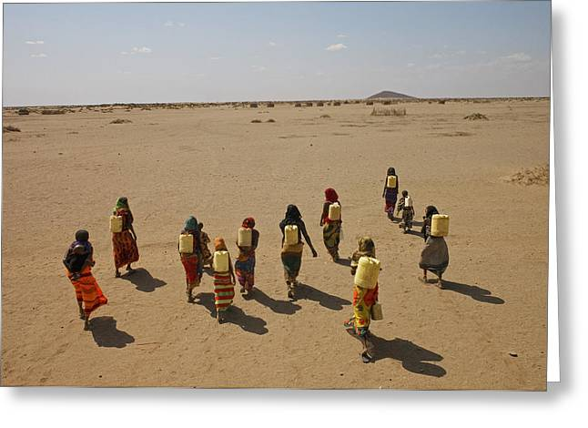 Ethnic And Tribal Peoples Greeting Cards - Gabra Women Carrying Heavy Jerry Cans Greeting Card by Lynn Johnson