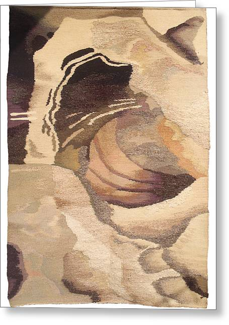 Wool Tapestries - Textiles Greeting Cards - Galaxy Greeting Card by Dora Stoilova Zlatan Stoilov