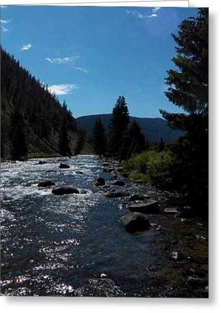 Fishing Creek Greeting Cards - Gallatin River Greeting Card by Ken Peterson