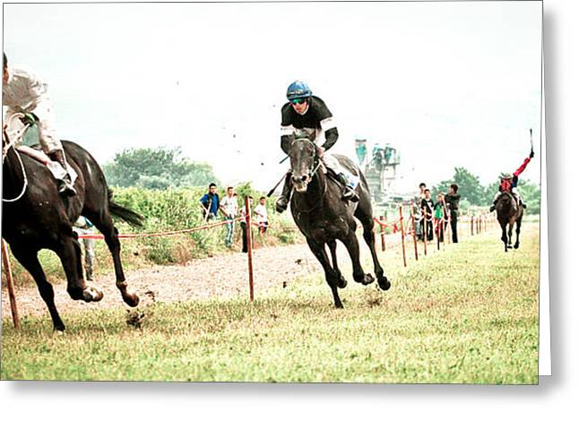 Race Horse Greeting Cards - Gallop Greeting Card by Marijo Basic