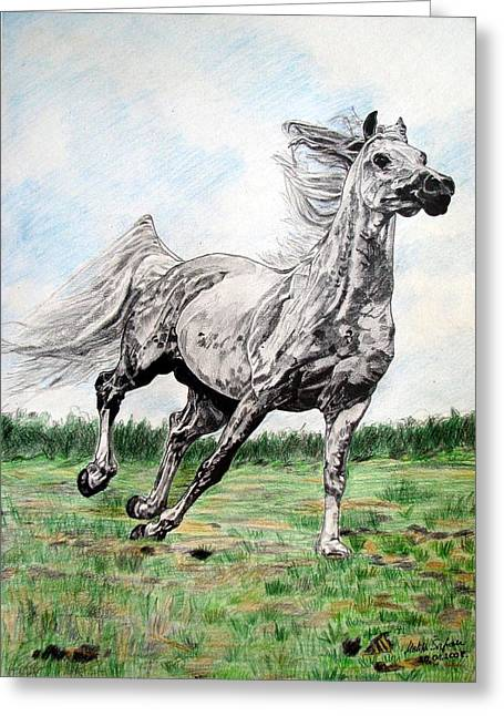 Melita Greeting Cards - Galloping arab horse Greeting Card by Melita Safran