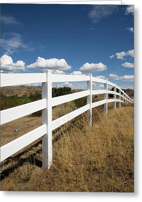 Galloping Fence Greeting Card by Peter Tellone