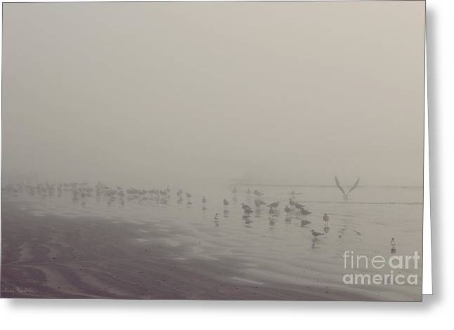 Foggy Beach Greeting Cards - Galveston Island foggy morning Greeting Card by Svetlana Novikova