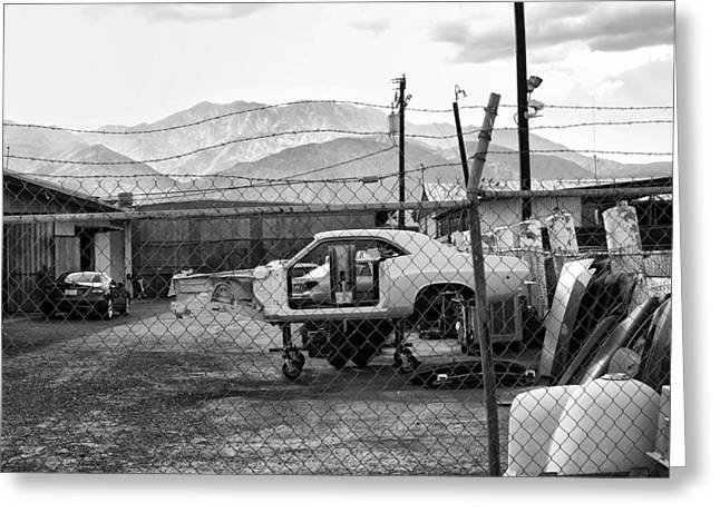 Screen Doors Greeting Cards - Garage Days BW Greeting Card by William Dey