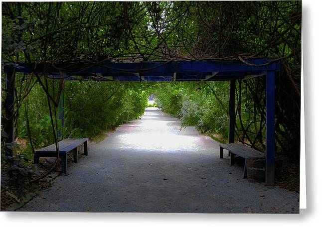 Charleston Pathway Greeting Cards - Garden Arbor Greeting Card by DigiArt Diaries by Vicky B Fuller