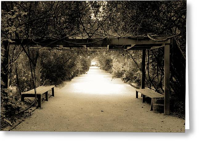Charleston Pathway Greeting Cards - Garden Arbor in Sepia Greeting Card by DigiArt Diaries by Vicky B Fuller