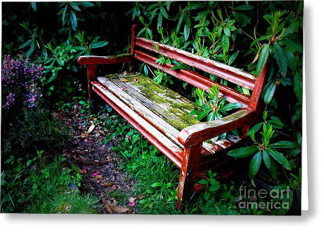 Garden Bench At The Old Rectory Greeting Card by Lainie Wrightson