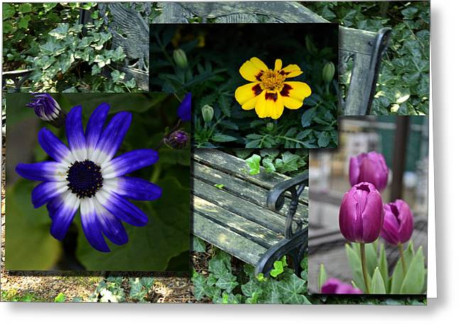 Garden Bench Greeting Card by Larry Bishop