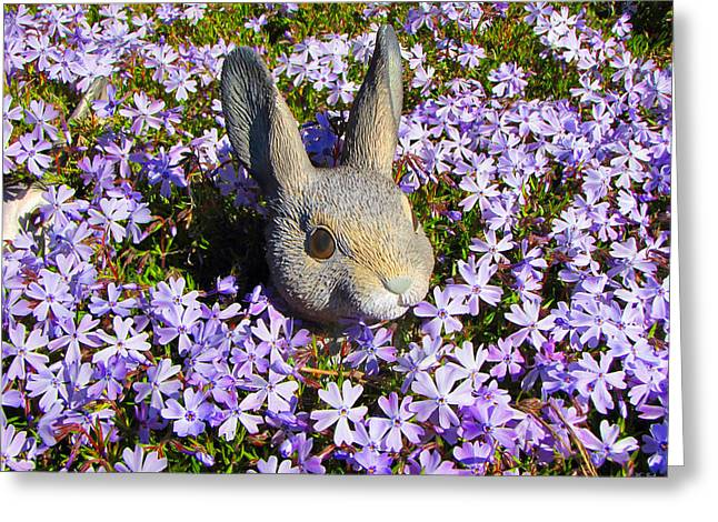 Button Nose Greeting Cards - Garden Bunny Greeting Card by Ms Judi