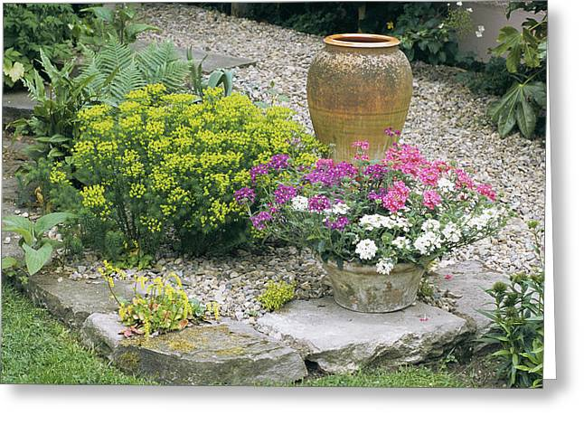 Stone Flower Planter Greeting Cards - Garden Flowers And Plant Pot Greeting Card by Archie Young