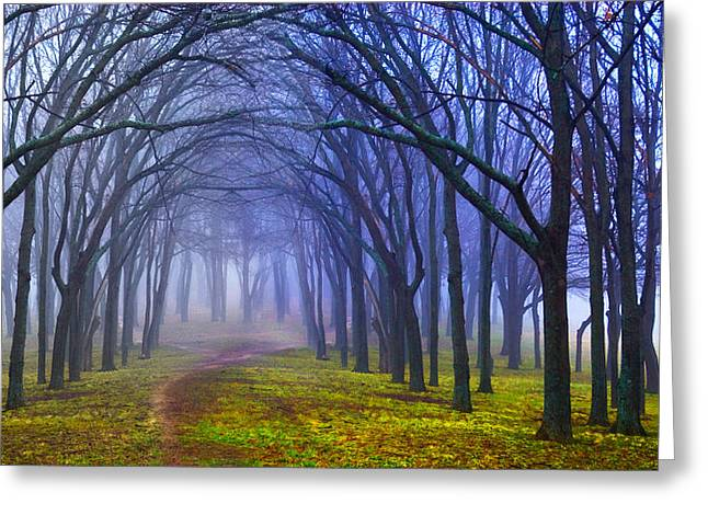 Mystical Landscape Greeting Cards - Garden for Good or Evil Greeting Card by David Clanton