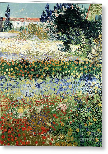Arles Paintings Greeting Cards - Garden in Bloom Greeting Card by Vincent Van Gogh