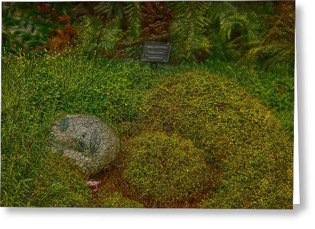 Jerry Cordeiro Framed Prints Greeting Cards - Garden Of Dreams Greeting Card by Jerry Cordeiro