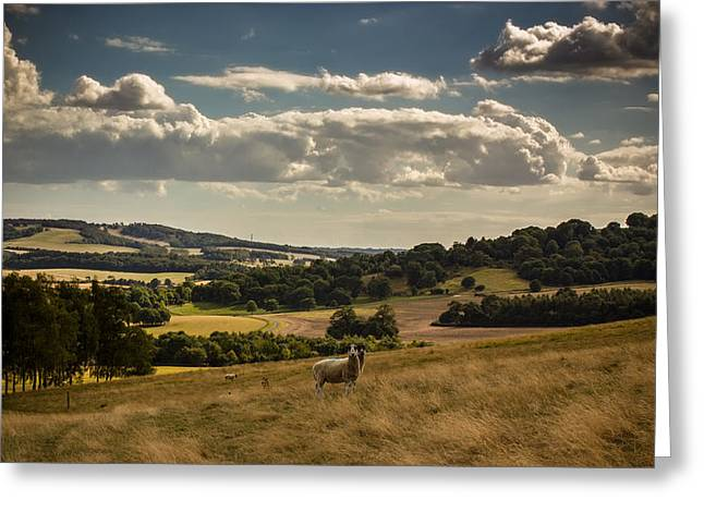 King Greeting Cards - Garden of England Greeting Card by Ian Hufton