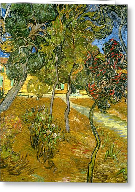Saint-remy De Provence Greeting Cards - Garden of Saint Pauls Hospital Greeting Card by Vincent van Gogh
