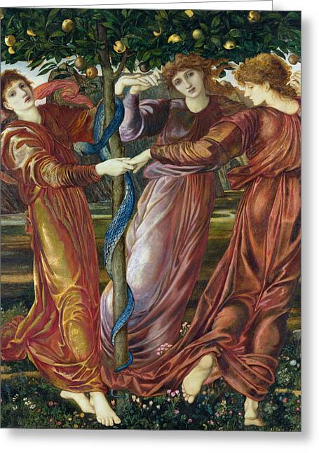 Burne Greeting Cards - Garden of the Hesperides Greeting Card by Sir Edward Burne Jones