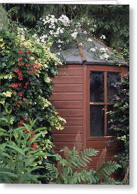 Wooden Shed Greeting Cards - Garden Shed Greeting Card by Archie Young