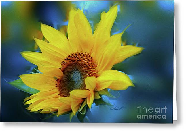 Postwork Greeting Cards - Garden Sun Greeting Card by Jutta Maria Pusl