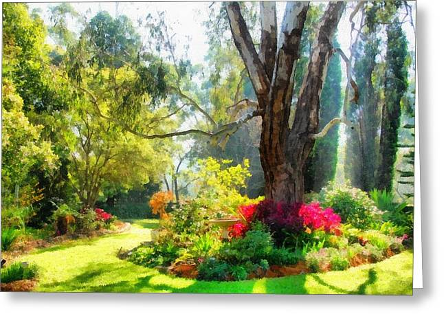 Dappled Light Greeting Cards - Garden sunlight 2 Greeting Card by Fran Woods