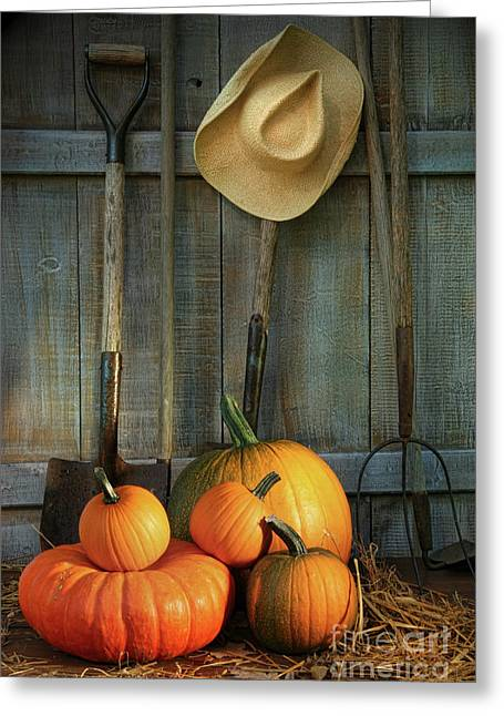 Orange Pumpkin Greeting Cards - Garden tools in shed with pumpkins Greeting Card by Sandra Cunningham