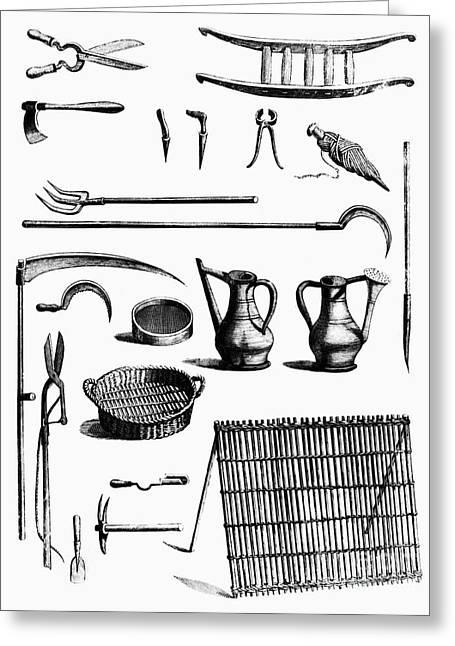 Trellis Greeting Cards - Gardening Tools Greeting Card by Granger