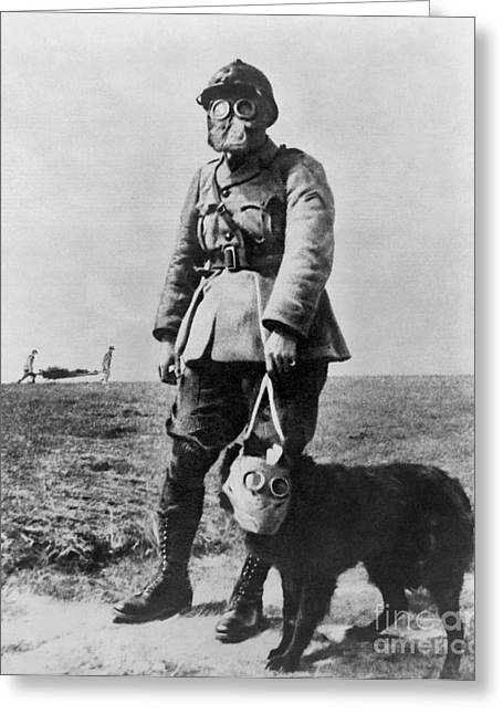 Working Dog Greeting Cards - Gas Masks In Wwi 1914-18 Greeting Card by Library of Congress
