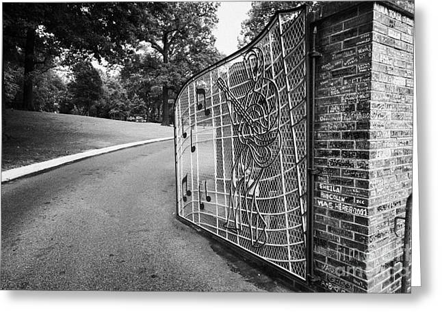 American Grafitti Greeting Cards - Gate And Driveway Of Graceland Elvis Presleys Mansion Home In Memphis Tennessee Usa Greeting Card by Joe Fox