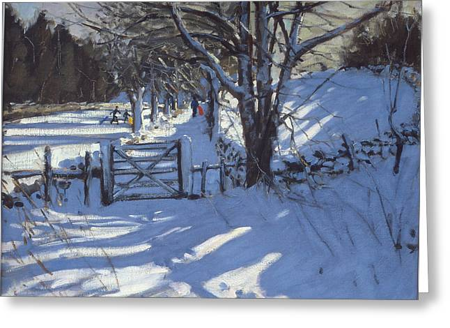 Fresh Snow Greeting Cards - Gate near Youlgreave Derbyshire Greeting Card by Andrew Macara