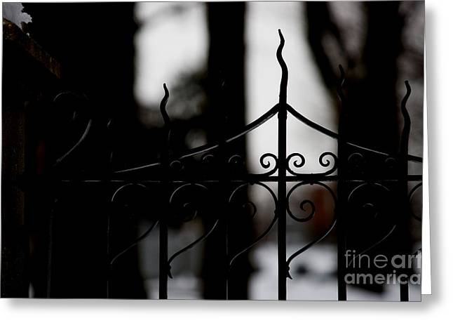 Wrought Iron Gate Greeting Cards - Gated Woods Greeting Card by Linda Knorr Shafer