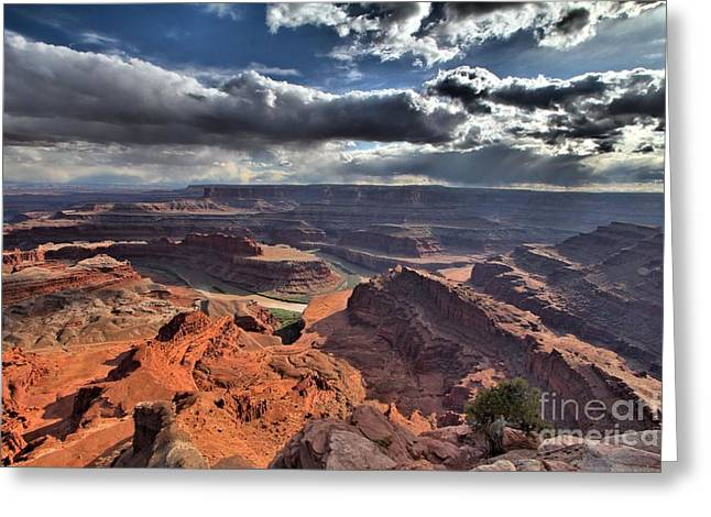 Dead Horse Point Greeting Cards - Gazing Into The Sky Greeting Card by Adam Jewell