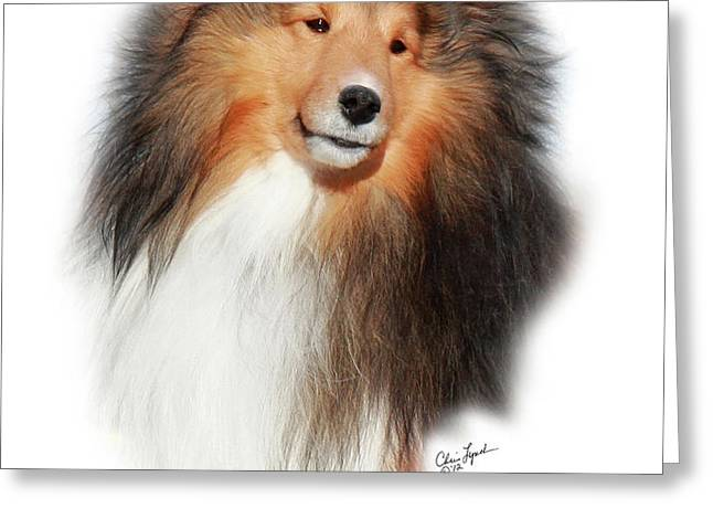 GCH Mystique Wikked Pursuit-1 Greeting Card by Chris Lynch