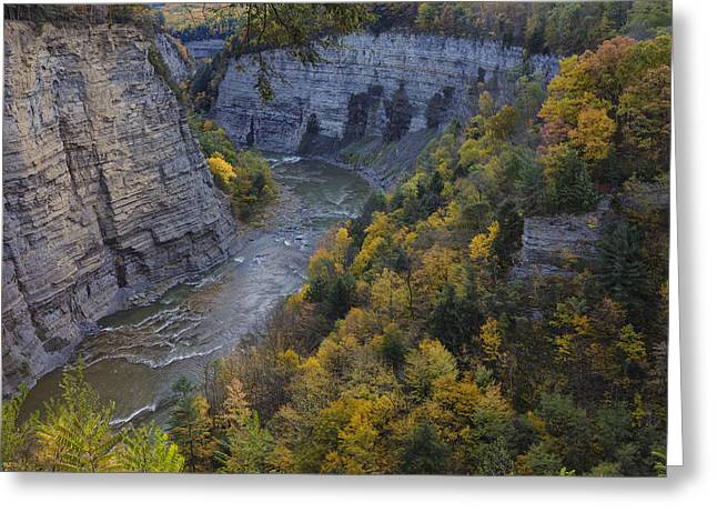 Autumn Prints Photographs Greeting Cards - Genesee River Gorge II Greeting Card by Rick Berk