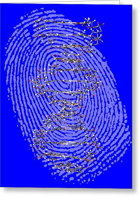 Double Stranded Greeting Cards - Genetic Fingerprint Greeting Card by Victor De Schwanberg