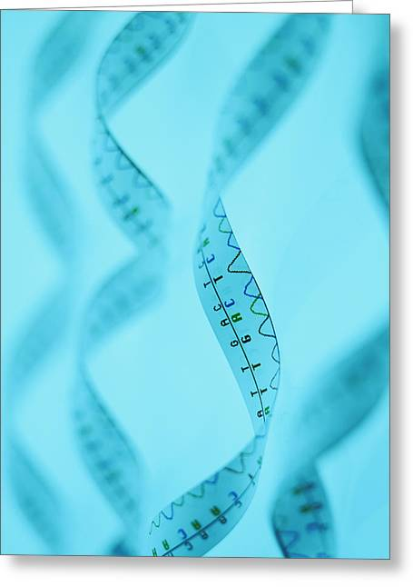 Helix Greeting Cards - Genetic Sequence Greeting Card by Lawrence Lawry