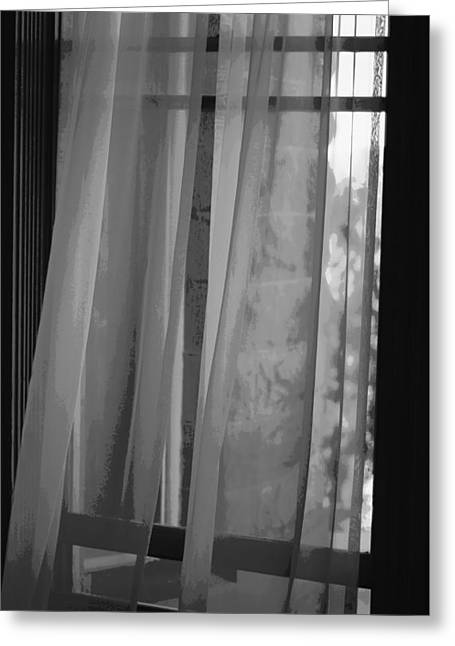 Transparent Fabric Greeting Cards - Gentle Breeze - BW Greeting Card by Marilyn Wilson