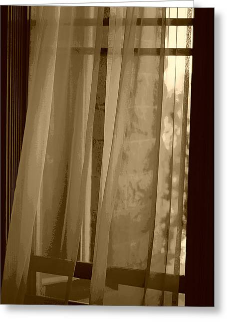 Transparent Fabric Greeting Cards - Gentle Breeze in Sepia Greeting Card by Marilyn Wilson