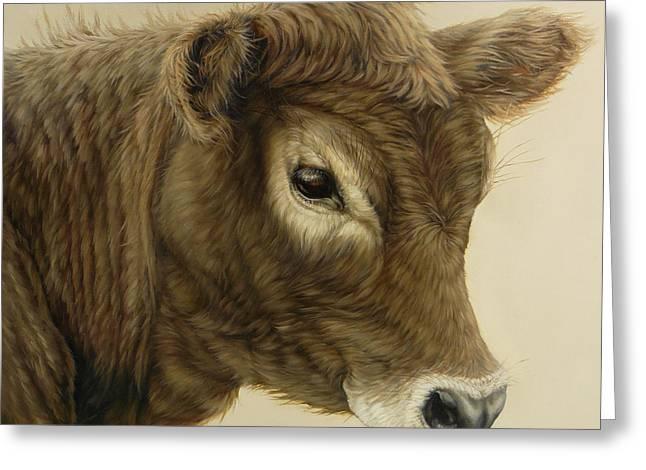 Margaret Stockdale Greeting Cards - Gentle Swiss Calf Greeting Card by Margaret Stockdale