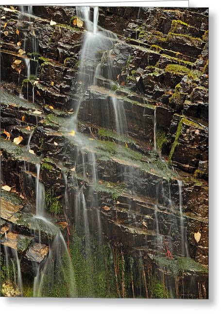 Moss Green Greeting Cards - Gentle Waterfall in Glacier National Park Greeting Card by Bruce Gourley