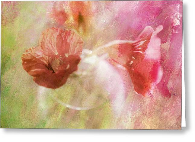 Abstract Digital Photographs Greeting Cards - Gentleness Greeting Card by Linde Townsend