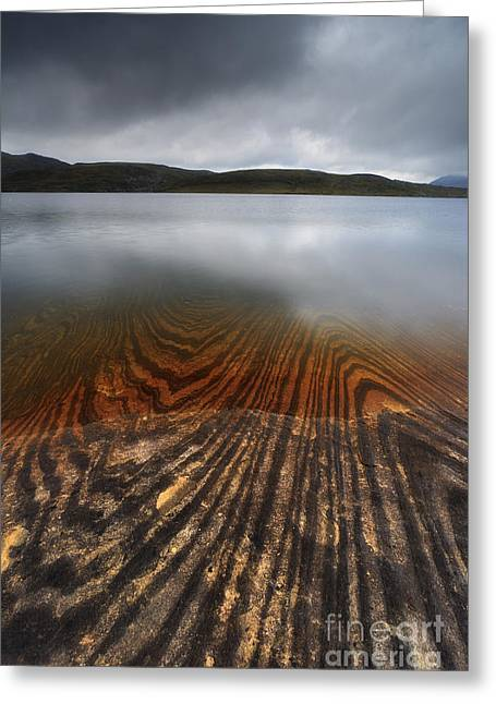 Nordland County Greeting Cards - Geology Lines In Sandvannet Lake Greeting Card by Arild Heitmann