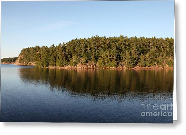Pinus Resinosa Greeting Cards - George Lake, Canada Greeting Card by Ted Kinsman