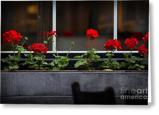 Red Geraniums Photographs Greeting Cards - Geranium Flower Box Greeting Card by Doug Sturgess